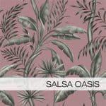 Salsa Oasis